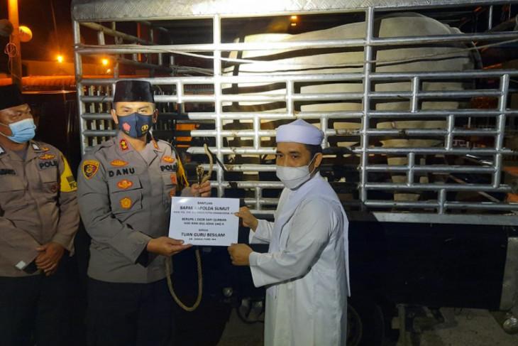 Kapolda Sumut serahkan hewan qurban 920 kilogram ke Babussalam