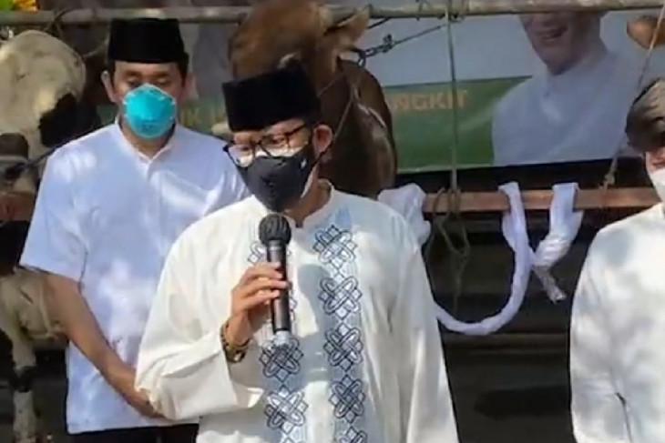 Sandiaga Uno berbagi 1.000 hewan kurban di 17 provinsi