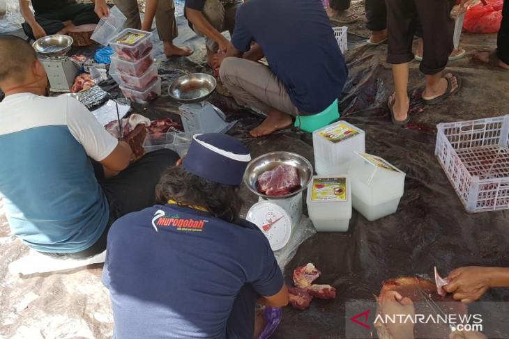 Panitia Musholla Imam Bukhari Tanah Bumbu potong sepuluh hewan kurban