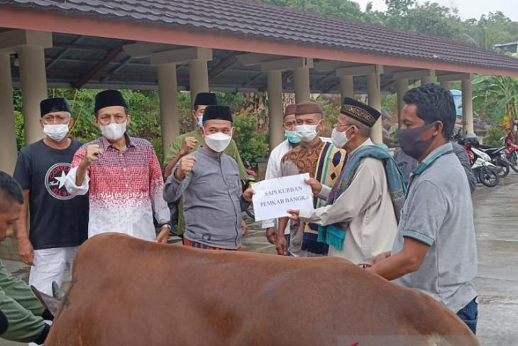 Bupati Bangka serahkan sapi ke panitia Masjid Agung