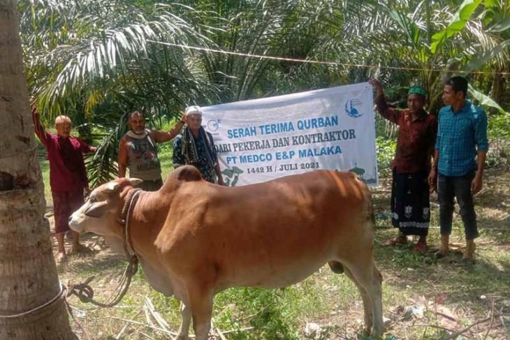 Perusahaan migas salurkan hewan kurban untuk masyarakat Aceh Timur