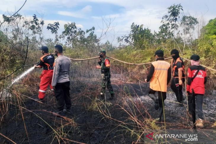BPBD Penajam ingatkan kerawanan kebakaran pada lahan gambut