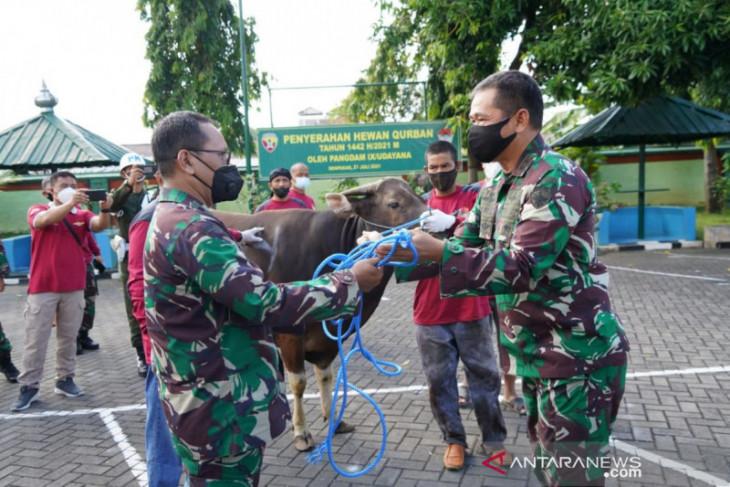Kodam IX/Udayana bagikan 1.620 Kantong Daging Kurban
