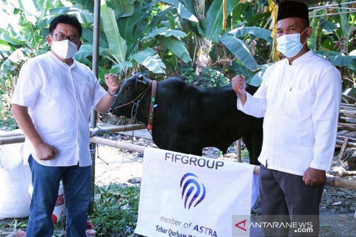 FIFGroup bagikan hewan kurban 371 ekor kambing dan 3 ekor sapi pada Idul Adha