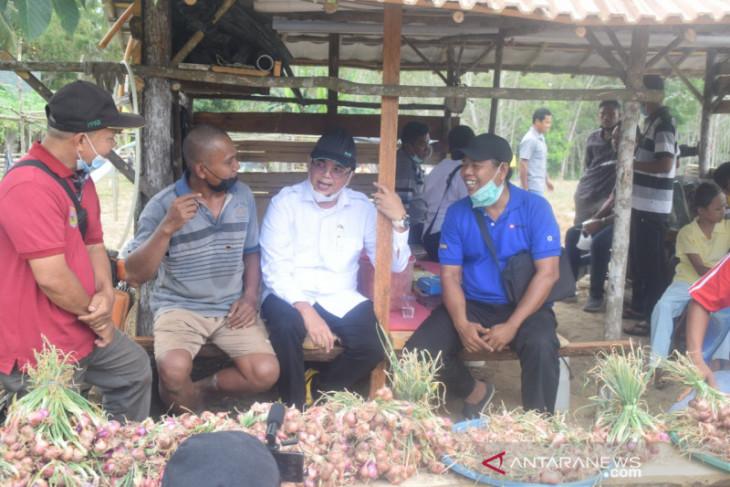 Legislator dukung pengembangan sentra bawang merah di Muarojambi