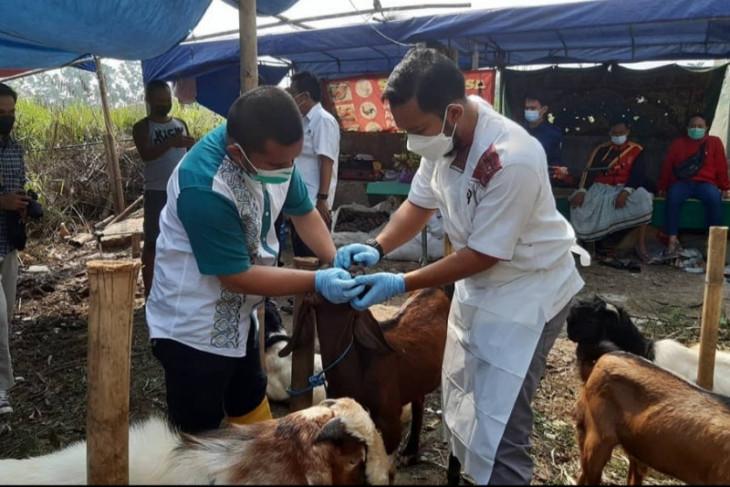 Animo warga Kota Tangerang berkurban tinggi, hewan dipotong 18.462 ekor