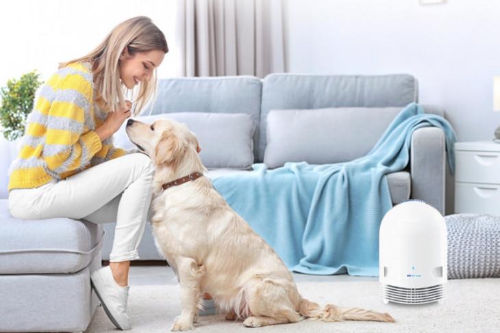 Pentingnya menjaga kebersihan udara meski di rumah saja