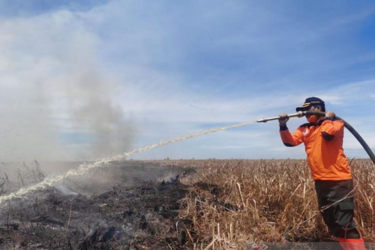 Gubernur : Warga buka lahan dengan membakar bisa dijerat hukum