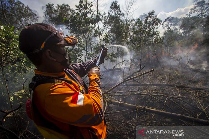 Upaya Pemadaman Kebakaran Lahan Di Kalsel