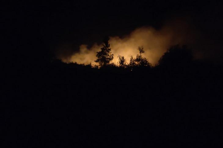 15 hektare lahan di Ogan Ilir Sumsel terbakar