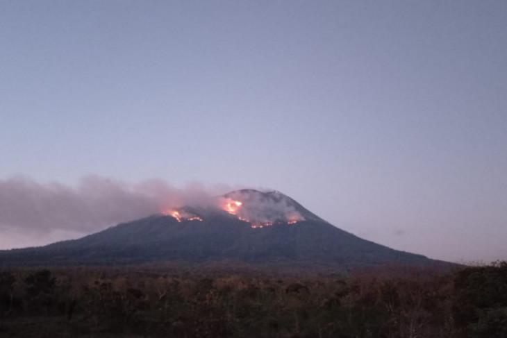 Erupsi Lewotolok menyebabkan kebakaran hutan