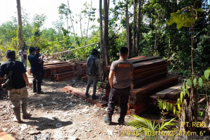 Polda Jambi tangkap dua terduga pelaku pembalakan liar di hutan Reki