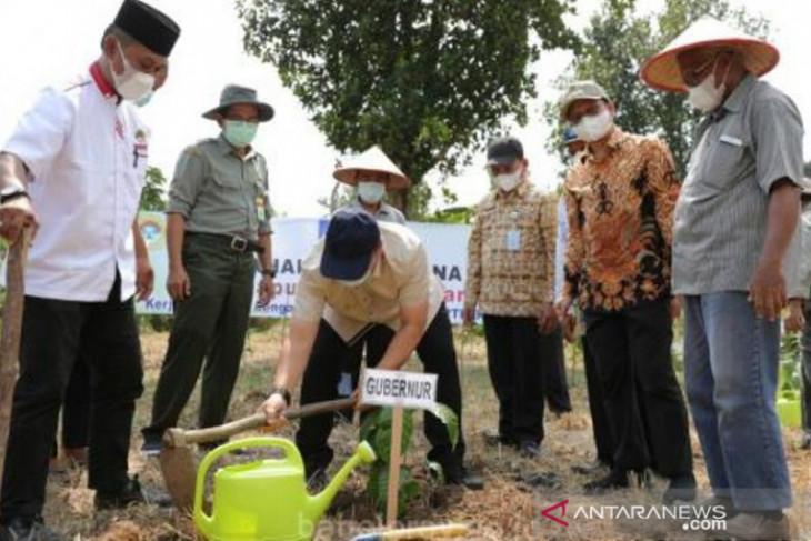 Bangka Belitung  fokus kembangkan