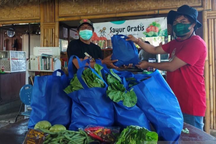 Petani Songan-Bangli berbagi sayuran gratis kepada warga  Kota Denpasar
