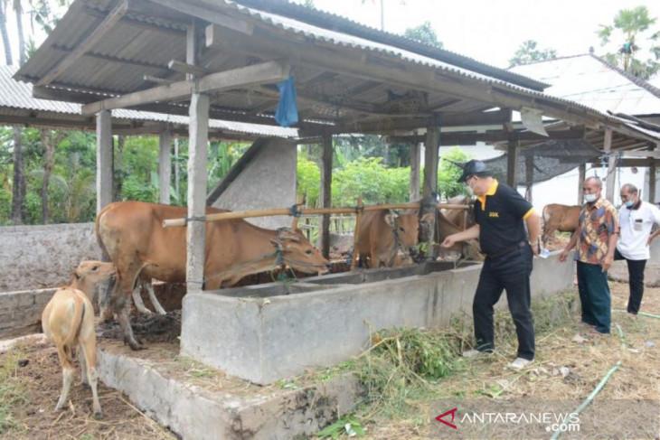 DPRD Bali dorong unit Sipadu produksi pupuk organik bersertifikat