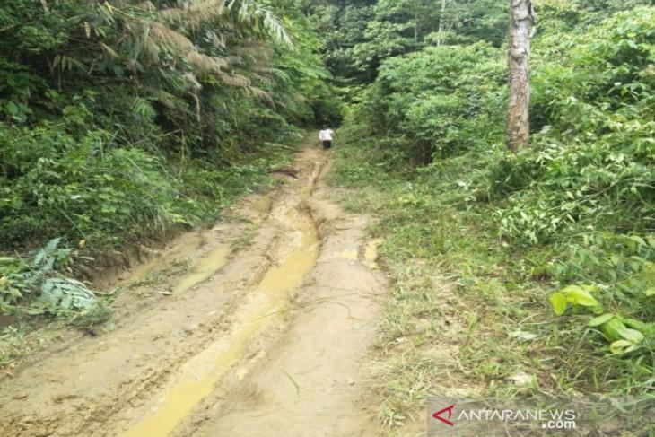 Minim infrastruktur, jalan menuju Banjar Lancat memprihatinkan