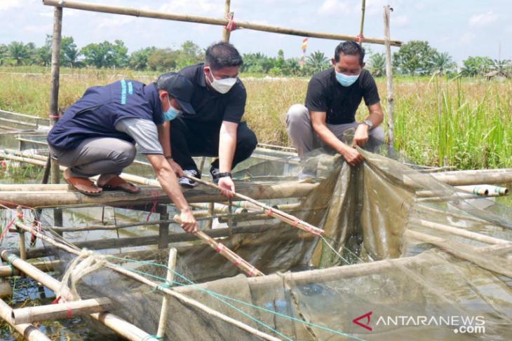 Bang Dhin apresiasi usaha perikanan rakyat Kalsel