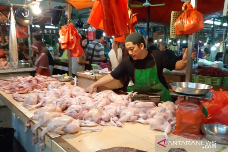 Harga daging ayam ras turun dorong Kalbar alami deflasi Juli 2021