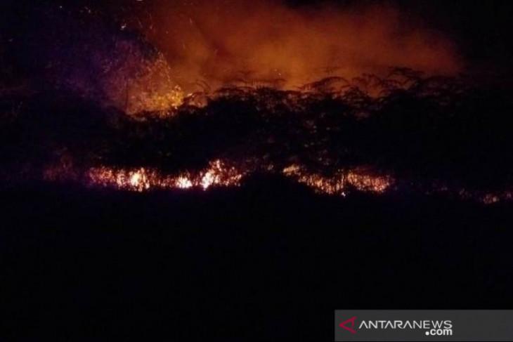 BPBD Penajam waspadai kebakaran hutan dan lahan di musim kemarau