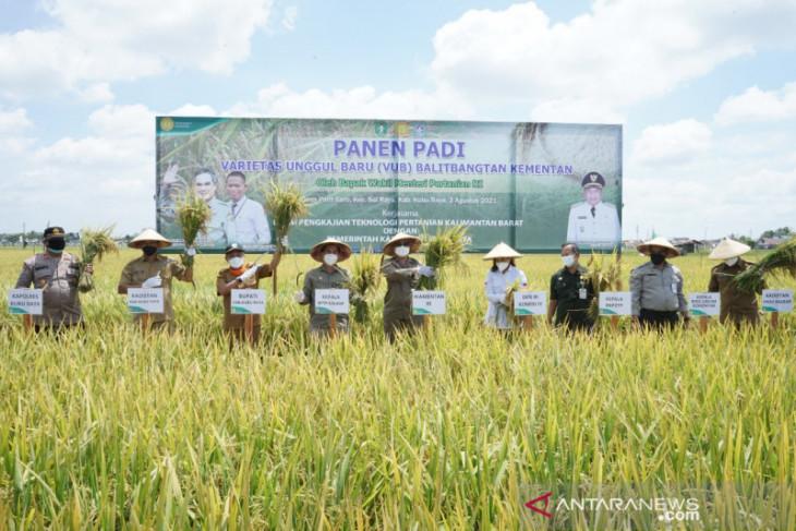 Wamentan harapkan petani milenial terus bertambah