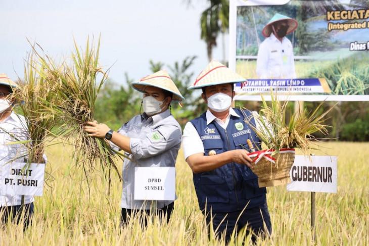 Sumatera Selatan akan jadi lumbung pangan nasional