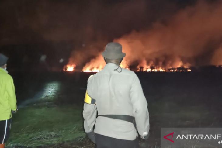 Tim gabungan padamkan karhutla di Kumpeh llir Kabupaten Muarojambi