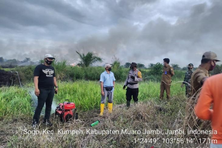 Karhutla di Jambi dalam tujuh bulan hanguskan 133,49 hektare