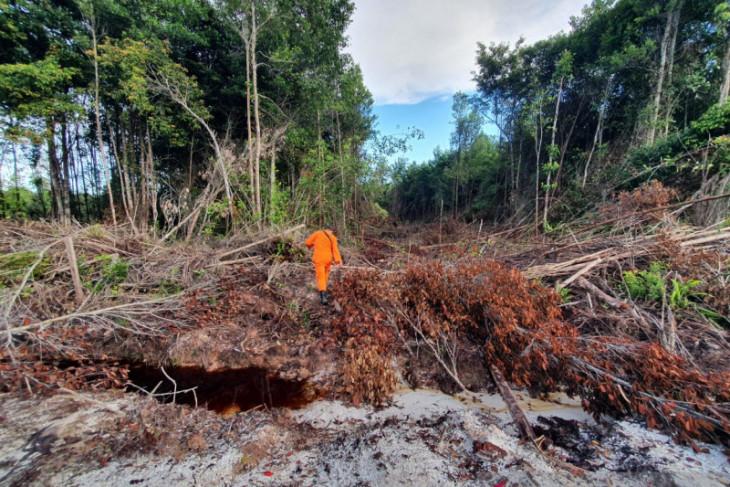 Dua orang dilaporkan tersesat di hutan Sungai Maya