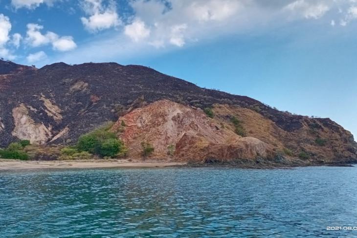 BTNK selidiki penyebab kebakaran di kawasan Taman Nasional Komodo