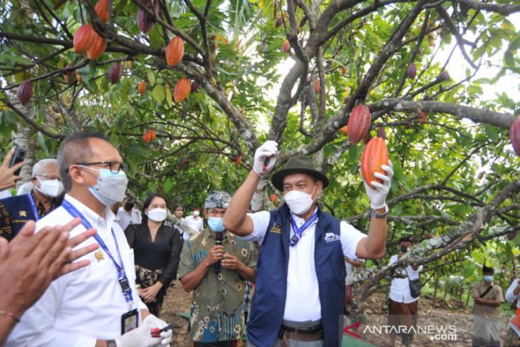 Kementan serahkan bantuan sarana produksi perkebunan di Bali