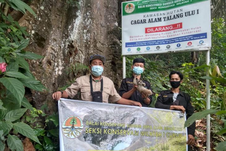 BKSDA Bengkulu-Lampung periode Januari-Juli ratusan satwa dilindungi dilepasliarkan