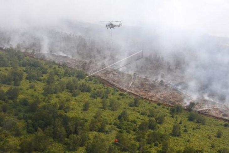 Satgas Karhutla Muba minta pencari kayu tak buang benda rawan terbakar