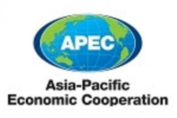 China contributes to APEC sub-fund on combating COVID-19