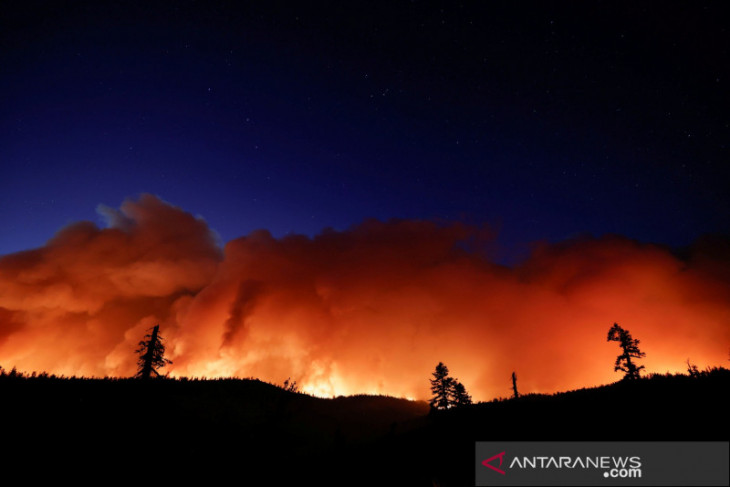 Joe Biden setujui deklarasi bencana di California