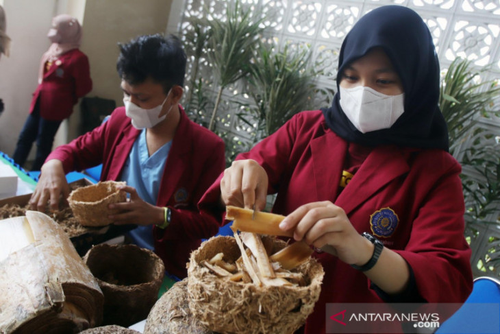 Mahasiswa UMSurabaya olah limbah pelepah pisang jadi pot ramah lingkungan