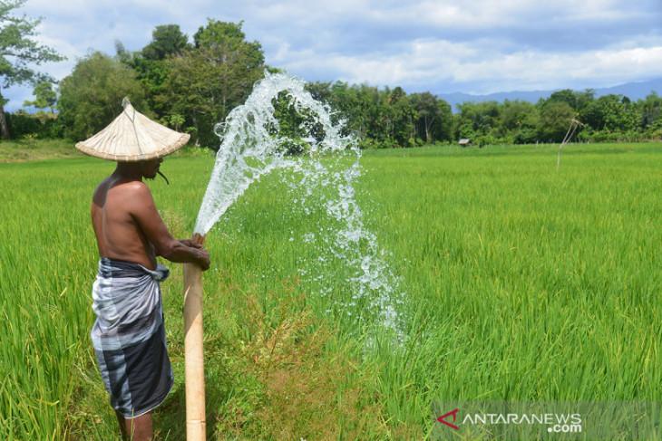 Anggota DPRA minta Pemprov Aceh serius perhatikan sekolah pertanian