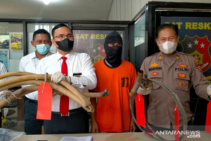 Polisi tangkap pelaku penambangan emas tanpa izin di Singkawang