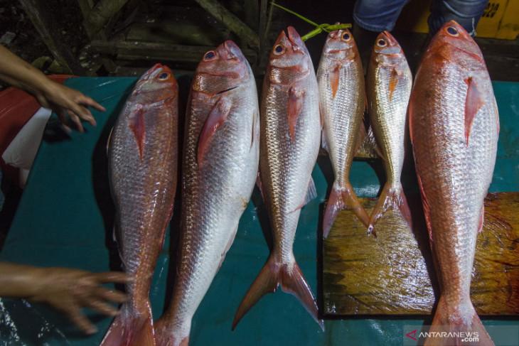 KKP-BKPM bidik investasi sektor kelautan dan perikanan di Maluku dorong investasi