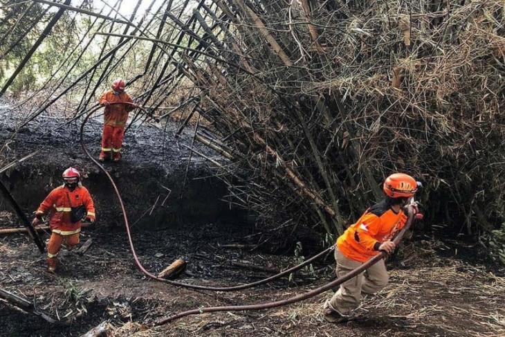 Pemkot Kediri antisipasi kebakaran lahan saat kemarau