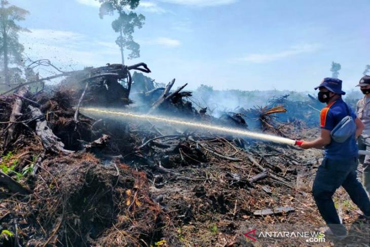 Dua hektare lahan gambut terbakar di Nagan Raya, begini upaya BPBD, TNI dan Polri