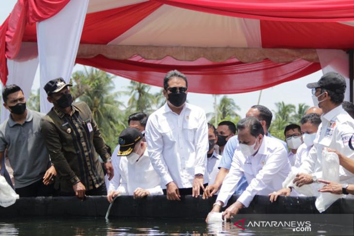 East Aceh now national center for vannamei shrimp farming