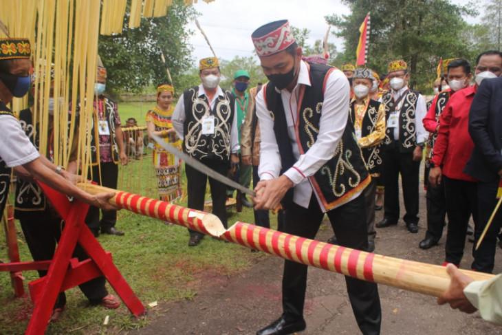 Suku Dayak Taman di Kapuas Hulu revisi hukum adat