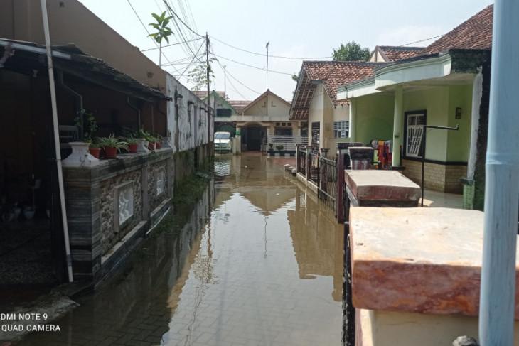 Puluhan rumah di Rangkasbitung, Lebak kebanjiran