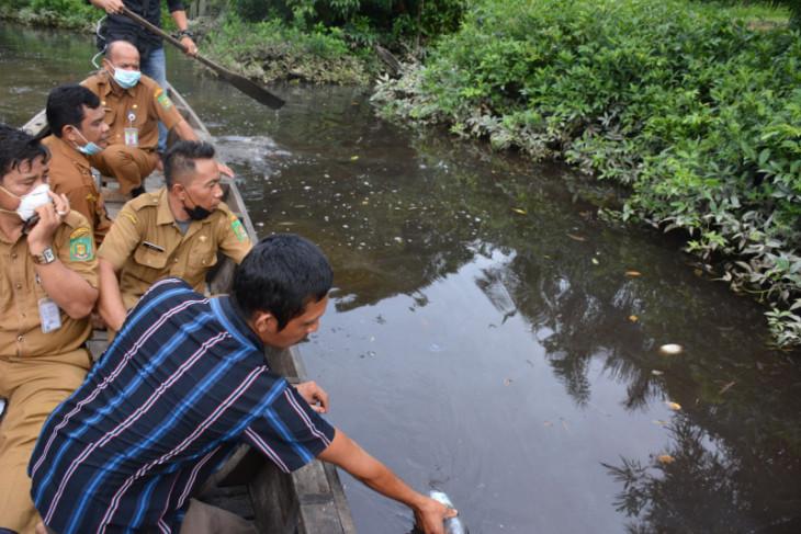 Ribuan ikan di Sei Sirah mati, Pemkab Langkat ambil sampel air yang diduga tercemar limbah