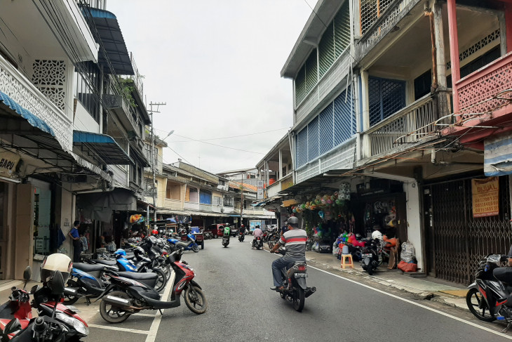 Tracing gambir's glory in Riau Islands