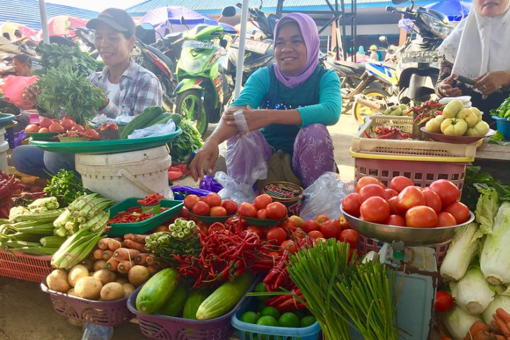 RI, FAO reaffirm stronger partnership for sustainable food systems