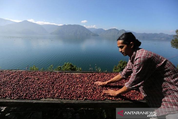 UMKM di Aceh kembang konsentrat kopi