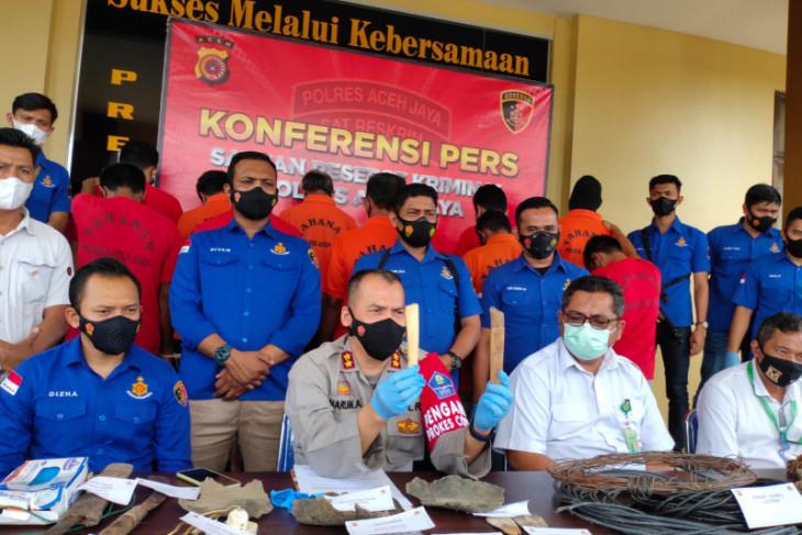 Polisi tangkap 11 pelaku terlibat kematian lima ekor gajah di Aceh Jaya
