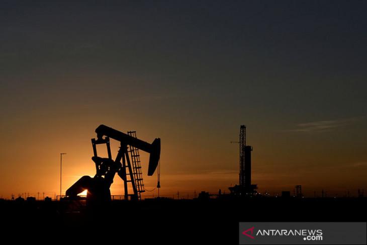 Harga minyak Senin pagi turun di perdagangan Asia