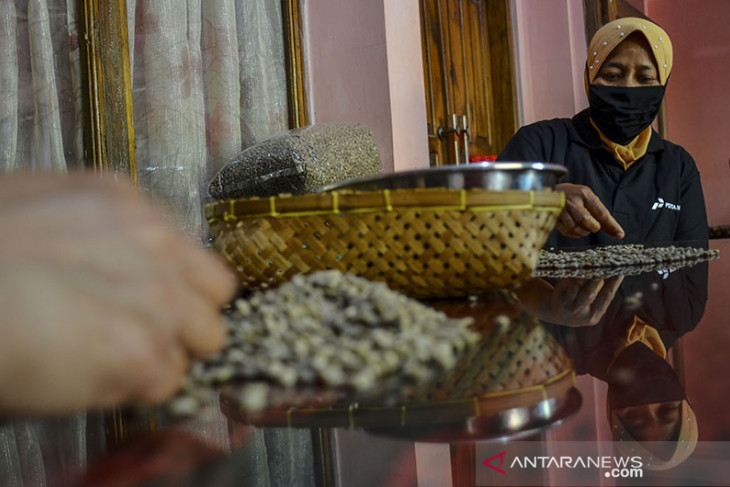 Pemberdayaan petani kopi di tengah pandemi